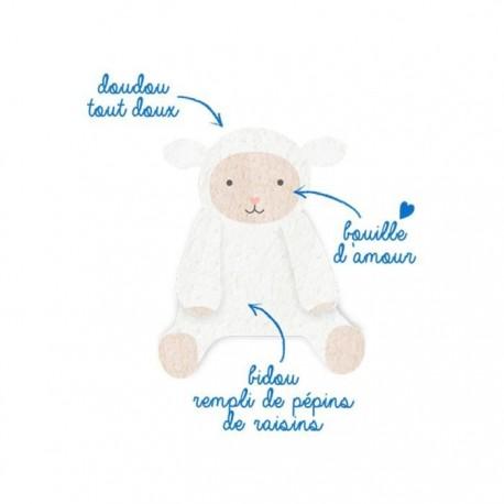 Bouillotte mouton + 6 mois